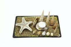 Seashells, Starfish und Kerze Stockfotografie