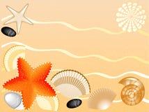 Seashells, Steine, seastars auf Sandhintergrund Lizenzfreies Stockfoto