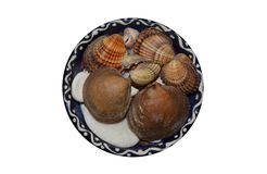 Seashells. And stones from the beach in a ceramic decorative bowl from Greece royalty free stock photo
