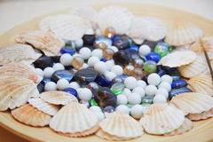 Seashells and stones Stock Photos