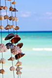 Seashells on a string Royalty Free Stock Image