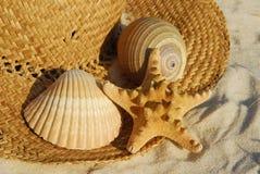 Seashells sul cappello di paglia fotografia stock