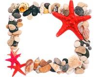 Seashells sulla cornice della sabbia Fotografia Stock