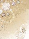 Seashells sulla sabbia illustrazione vettoriale