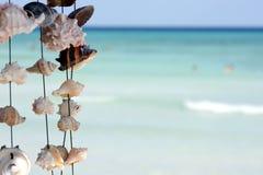 Seashells sur une chaîne de caractères photographie stock