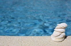 Seashells by the swimming pool Stock Images