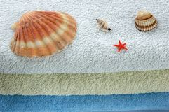 Seashells and towels. Three seashells and small red starfish on folded towels Royalty Free Stock Images