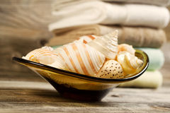 Seashells and Towels on Rustic Wood Stock Image