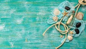 Seashells on turquoise background Royalty Free Stock Photography