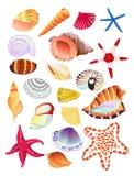 Seashells und Starfish Stockfotos