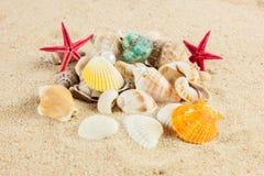 Seashells und starfish on sand beach postcard Stock Images
