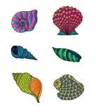 seashells ustawiający Obraz Royalty Free