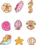 seashells ustawiający Fotografia Stock