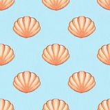 Seashells. Watercolor seamless pattern 3. Watercolor background. Hand drawn seamless pattern Royalty Free Stock Photography