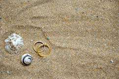 Seashells and wedding rings on the sand. Seashells and two wedding rings on a background of sand on an ocean beach Stock Photography