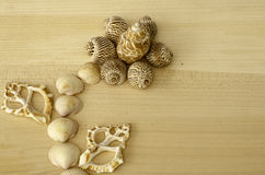 Seashells on the wooden background. stock image