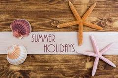Seashells on wooden background Stock Photo