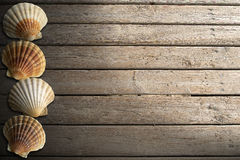 Seashells on Wooden Boardwalk with Sand Royalty Free Stock Photos