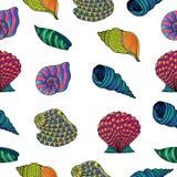 Seashells wzór Zdjęcie Royalty Free