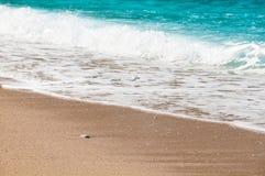 Seashore, волны и песчаный пляж Стоковая Фотография RF
