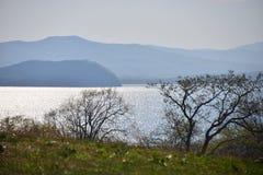 Seashore, горы, деревья Стоковое Изображение