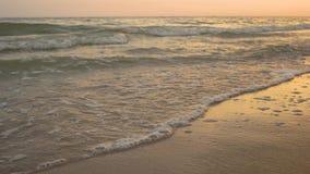 Seashore и волны Sandy акции видеоматериалы
