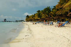 seashore Маврикия Стоковое Фото