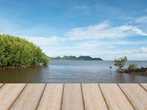 Seashore мангровы под голубым небом в Таиланде Стоковые Фото