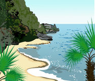 seashore тропический Стоковые Фото