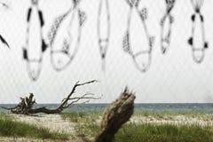 Seashore через fishnet Стоковые Изображения