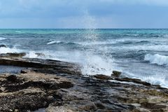 seashore Image stock