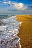 Seashore stock image