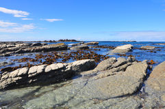 seashore Стоковое Фото