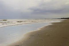 seashore Royaltyfria Foton