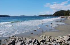 Seashore Imagens de Stock