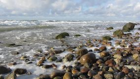 seashore stock video