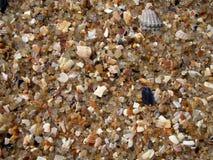 seashore Stock Fotografie