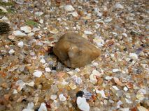 seashore Royalty-vrije Stock Foto