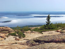 Seashore of Acadia National Park. From top of mountain. Maine Royalty Free Stock Photography