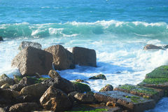 Seashore in Alexandria Stock Photography