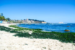 Seashore in Algarrobos Chile. Wide view of seashore in Algarrobo Chile Royalty Free Stock Photo