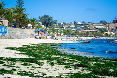 Seashore in Algarrobos Chile. Wide view of seashore in Algarrobo Chile Stock Images