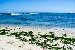 Seashore in Algarrobos Chile. Wide view of seashore in Algarrobo Chile Stock Photography