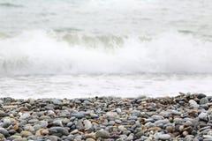 Seashore background Stock Image