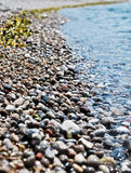 Seashore Royalty Free Stock Photography