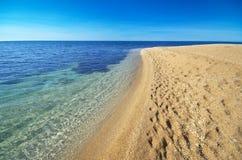Seashore bonito Imagem de Stock Royalty Free