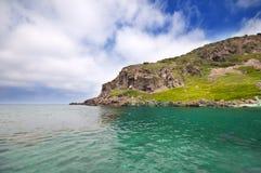 Seashore com ondas e espuma Foto de Stock Royalty Free
