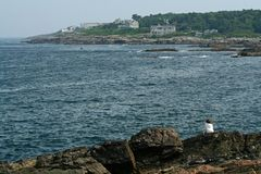 Seashore de Maine Imagem de Stock Royalty Free