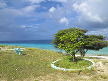 Seashore em Bonaire Fotografia de Stock Royalty Free