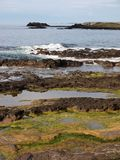 Seashore of Ireland Royalty Free Stock Photo